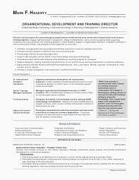 Combination Resume Templates New Resume Templates It Resume Template Resume Letter Best Formatted
