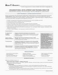 Combination Resume Templates New Resume Templates It Resume Template Resume Letter Best Formatted