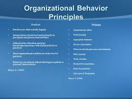 organizational behavior principles ppt video online  organizational behavior principles