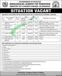 zoological survey of islamabad jobs assistant zoological survey of islamabad jobs