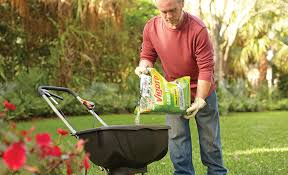 Best Lawn Fertilizer For Your Yard The Home Depot
