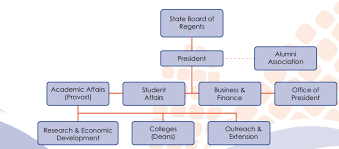 1 Simplified Organisational Chart Of Iowa State University