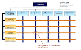 Organizational Structure Chart Of Mcdonalds Organisational Structure And Different Types Of Structures