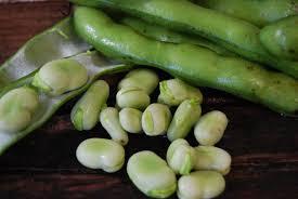 fava beans 8oz