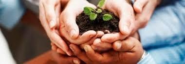 [Armando Iachini]: Social Responsibility: Entrepreneurs and Duties