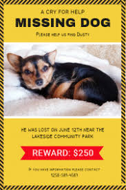 how to make lost dog flyers make missing pet flyers in minutes postermywall