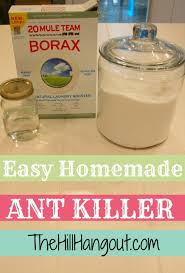 borax for ant control. Perfect For Altu003dant Killer In Borax For Ant Control T