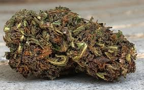 Jagermeister Weed Review