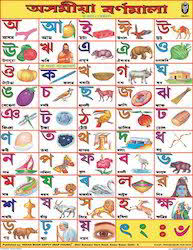 Assamese Flower Chart Assamese Alphabet Chart