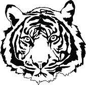 tiger head clip art black and white. Tiger Head Graphic Mascot Throughout Clip Art Black And White