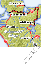day 1 auckland to whitianga driving route auckland napier Whitianga Map New Zealand Whitianga Map New Zealand #20 whitianga new zealand map