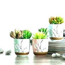 best indoor office plants. Best Office Desk Plants Indoor For  Cactus Plant .