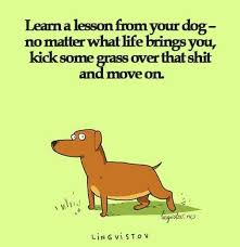Funny Life Lessons