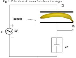 Pdf Prediction Of Banana Quality During Ripening Stage
