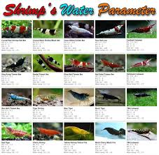 Freshwater Fish Tank Temperature Chart Water Parameters Needed For Shrimp Breeding Temperature Kh