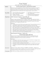 Insurance Adjuster Resume Template Fair Insurance Adjuster Resume For Sample Resumes Objectives Classy 1