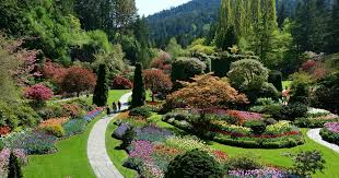 butchart gardens tours. Wonderful Gardens FullDay Victoria And Butchart Gardens Tour From Vancouver  Vancouver  Canada  GetYourGuide For Tours L