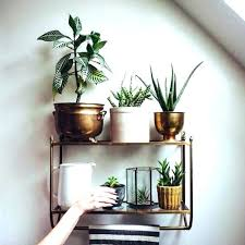 plant holders for wall mounted plant holder wall mounted planter resin wall planters wall planters wall plant holders for wall