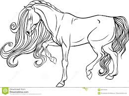 Adult Coloring Page Horse Stock Vector Illustration Of Drawing