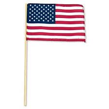 USA FLAG에 대한 이미지 검색결과