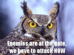 funny owl quotes | owl motivational posters. The owl, wants and ...