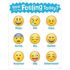 Feelings Vocabulary Chart Feelings Chart Amazon Com