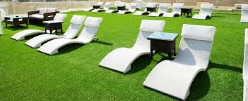 декоративная ландшафтная трава