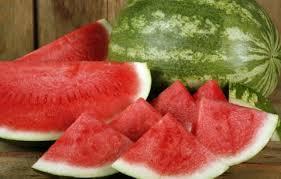 Výsledek obrázku pro meloun
