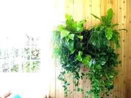 medium size of hanging wall garden pots planter bunnings planters outdoor vertical green kids room adorable