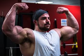 huge arms workout guide the best exercises for mive arms