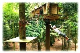 treehouse furniture ideas. Treehouse Furniture Accessories Inspiration For Designing A Home With Best Ideas .