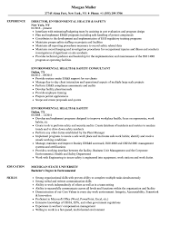 Environmental Health Safety Resume Samples Velvet Jobs
