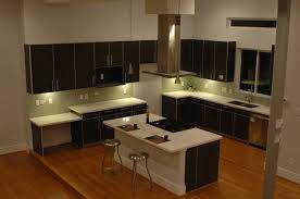 dark wood modern kitchen cabinets. Contemporary Kitchen With High Ceilings Light Wood Floors And Dark Cabinets Modern I