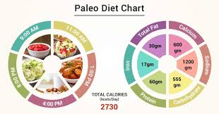 Paleo Chart Diet Chart For Paleo Patient Paleo Diet Chart Lybrate