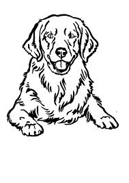Duitse Herder Huisdier Hond Dierlijke Lijnwerk Tekening Idee