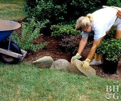 Best Backyard Design Ideas Best Selecting Trees For Your Yard Better Homes Gardens