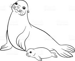 Small Picture Coloring Pages Mother Seal With Her Little Cute Baby stock vector