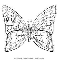 Butterfly Coloring Book Adult Older Children Stock Vector Royalty