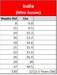 Australian Shepherd Growth Chart Best Picture Of Chart