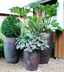 lovely design for potted plants shade ideas patio patios in the trees a beautiful porch