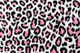 high quality leopard print wallpapers tanisha tai