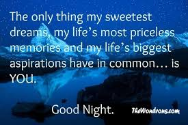 Goodnight My Love Quotes Beauteous Good Night My Beautiful Love Quotes Hover Me