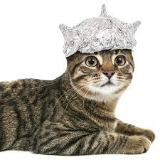 Image result for tin foil hat