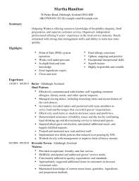 Waitress Resume Template Resume Waitress Cv Template Summary
