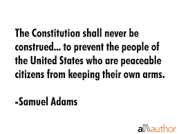 Constitution Quotes Enchanting The Constitution Shall Never Be Construed Quote