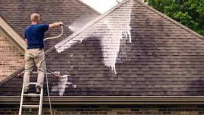 Facts about Conducting Regular Roof Cleaning - AFA Projects