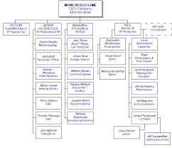 Volkswagen Organizational Structure Chart Vanderworld A Celebration Of All Things Meer