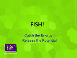 Chart House Fish Philosophy Robin Kennedy Sphr My Hr Department Ppt Video Online Download