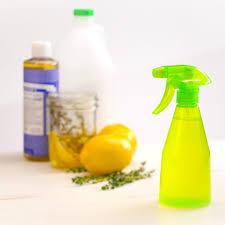 Natural All-Purpose Cleaner vinegar castile soap lemon thyme