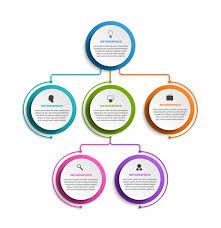 Organization Chart Design Template Infographic Design Organization Chart Template Vector
